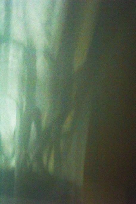 claire-jolin-photographie-P2170121-Modifier-2-web