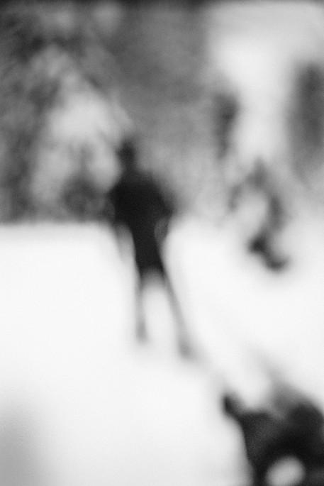 """""""L'Œil du chien qui hurle"""", Claire Jolin, 2015"""